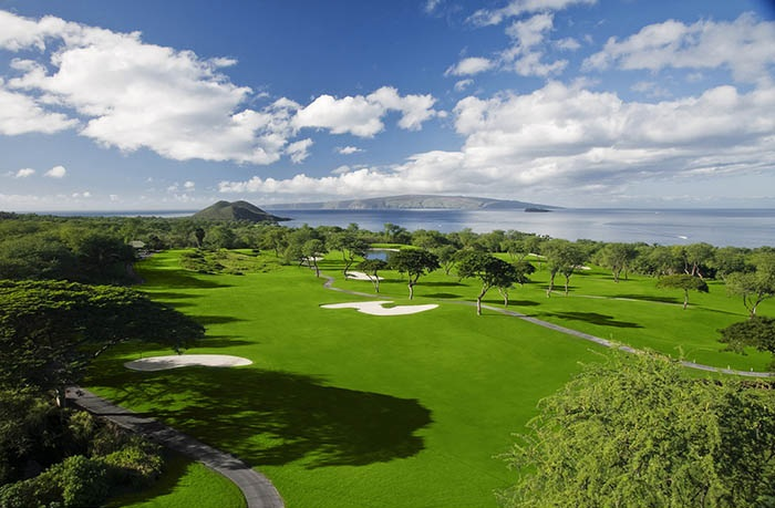 Wailea-Golf-Club-Gold-Course-Hole-15