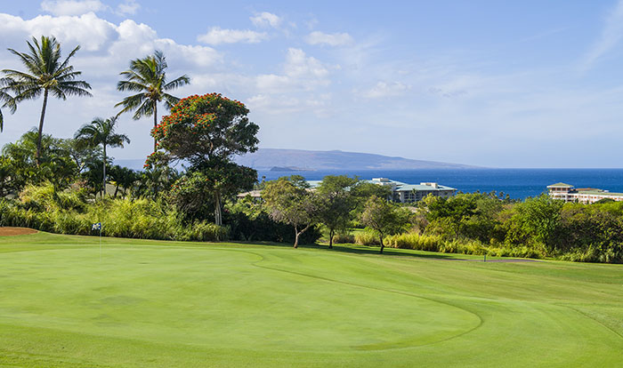 golf-wailea_old_blue_maui_hawaii-25