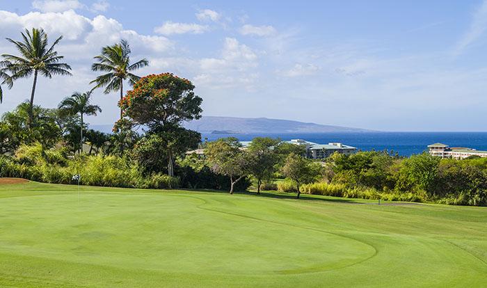 golf-wailea_old_blue_maui_hawaii-25