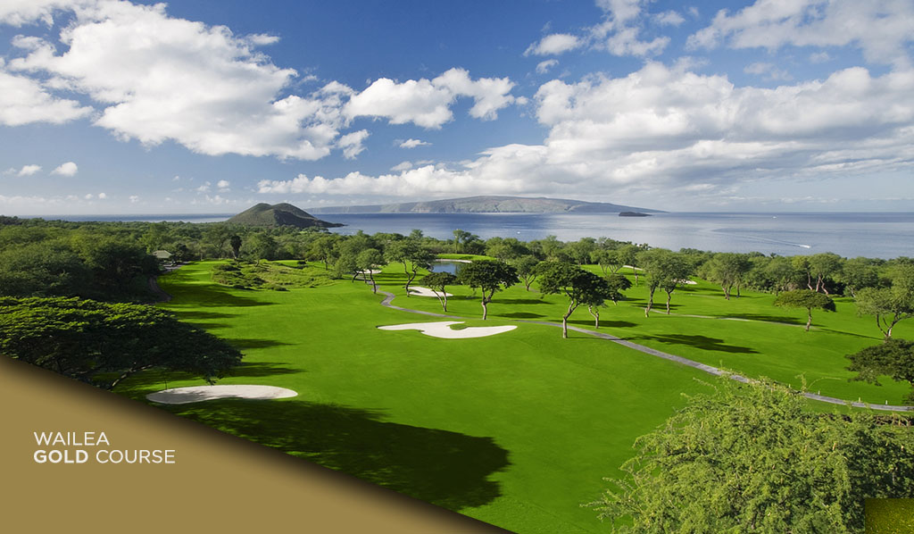 wailea-golf-gold-15-1024x598-angle2